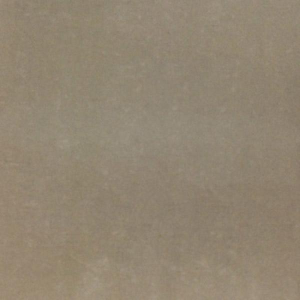 GẠCH MEn ĐỒNG TÂM DT005 60x60